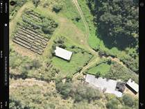 Farms and Acreages for Sale in Bo. Esperanza, Arecibo, Puerto Rico $3,500,000