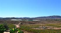 Lots and Land for Sale in valle guadalupe, Baja California $1,350,000