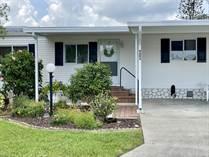 Homes for Sale in Island Lakes, Merritt Island, Florida $117,500