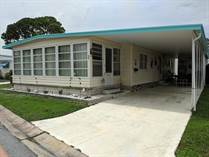 Homes for Sale in Down Yonder Village, Largo, Florida $35,900