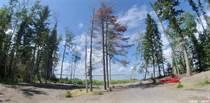 Lots and Land for Sale in Saskatchewan, Whelan Bay, Saskatchewan $319,900