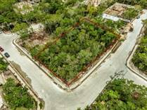 Lots and Land for Sale in Aldea Zama, Tulum, Quintana Roo $806,000