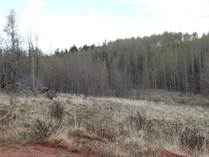Lots and Land for Sale in Fairplay, Colorado $87,000