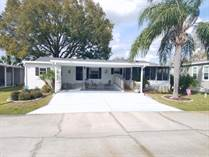 Homes for Sale in Ariana Village, Lakeland, Florida $64,500