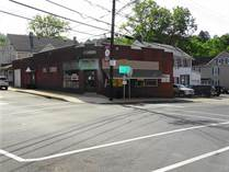Multifamily Dwellings for Sale in Pennsylvania, Bangor, Pennsylvania $259,000