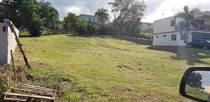 Lots and Land for Sale in BO GUAYABO, Aguada, Puerto Rico $69,500