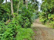 Lots and Land for Sale in Samara, Guanacaste $40,000