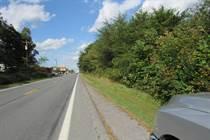 Homes for Sale in Berkeley Springs, West Virginia $335,000