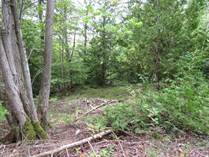 Lots and Land Sold in Cape Chin South, Northern Bruce Peninsula, Ontario $149,000