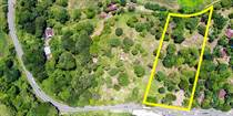 Commercial Real Estate for Sale in Grecia, Alajuela $600,000
