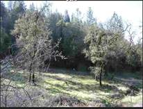 Homes for Sale in Alta Sierra Estates, GRASS VALLEY, California $119,000