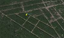 Lots and Land Sold in Komchen, Yucatan $155,000