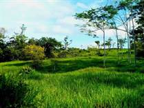 Lots and Land for Sale in Esterillos, Puntarenas $85,000