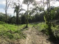 Homes for Sale in San Ignacio, Cayo $125,000