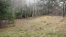 Homes for Sale in Forest Hill, Savage Harbour, Prince Edward Island $23,000