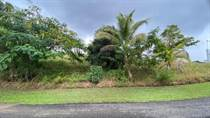 Lots and Land for Sale in Bo. Hoyamala, San Sebastian, Puerto Rico $39,900