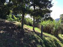 Homes for Sale in Atenas, Alajuela $47,500
