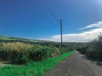 Lots and Land for Sale in Naalehu, Hawaii $19,000