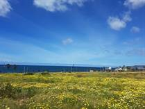 Lots and Land for Rent/Lease in Sauzal, Ensenada, Baja California $3,000 monthly