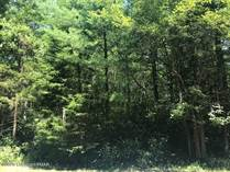 Lots and Land for Sale in Pocono Pines, Pennsylvania $99,900