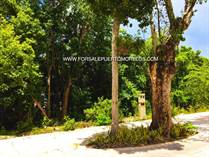 Lots and Land for Sale in Fraccionamiento, Puerto Morelos, Quintana Roo $45,000