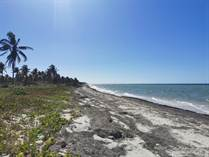 Lots and Land for Sale in Telchac Puerto, Yucatan $8,500,000