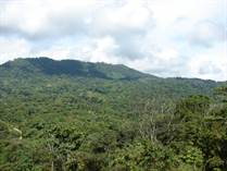Lots and Land for Sale in Portalon, Puntarenas $85,000