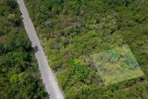 Lots and Land for Sale in Kukulkan, Tulum, Quintana Roo $550,000