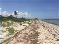 Lots and Land for Sale in Santa Clara, Yucatan $149,900