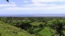 Lots and Land for Sale in Cabrera, Maria Trinidad Sanchez $48,400