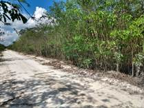 Lots and Land for Sale in Xaibe, Corozal $27,500