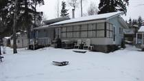 Homes for Sale in Lessard Lake Estates, Darwell, Alberta $94,900