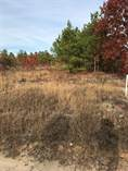 Lots and Land for Sale in South Carolina, PAGELAND SC, South Carolina $16,500