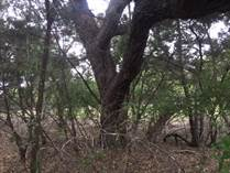 Lots and Land Sold in Devils Backbone Heights, Canyon Lake, Texas $59,800