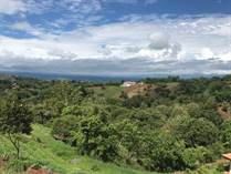 Lots and Land for Sale in Morazán, Atenas, Alajuela $118,000