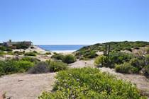Lots and Land for Sale in San Jose del Cabo, EAST CAPE PLAYA TORTUGA , Baja California Sur $195,000