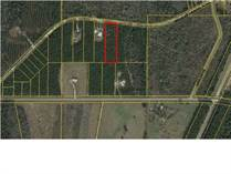 Lots and Land for Sale in Wewahitchka, Florida $17,000