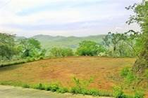 Lots and Land for Sale in Playa Potrero, Guanacaste $65,000