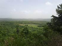 Lots and Land for Sale in San Ignacio, Cayo $120,000