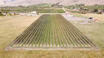 Farms and Acreages for Sale in Rural Keremeos, Keremeos, British Columbia $749,000