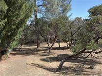 Lots and Land for Sale in Kelseyville, California $14,000