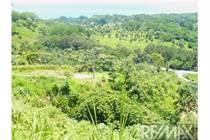 Lots and Land for Sale in Puntarenas, Tarcoles, Puntarenas $39,000