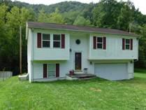 Homes for Sale in Delbarton, West Virginia $118,500