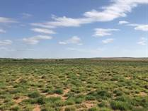 Farms and Acreages for Sale in Hall County, Estellline, Texas $446,884