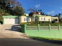 Homes for Sale in Campo Bello, Cidra, Puerto Rico $249,000