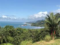 Lots and Land for Sale in Dominicalito, Puntarenas $270,000