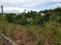 Lots and Land for Sale in BO. PIEDRAS BLANCAS, Aguada, Puerto Rico $44,000