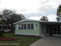 Homes for Sale in Brookridge, Florida $149,669