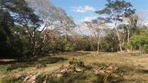 Lots and Land for Sale in Santa Teresa, Puntarenas $82,000