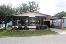 Homes for Sale in Tropical Acres Estates, Zephyrhills, Florida $38,500